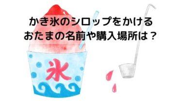 かき氷のシロップをかける道具は100均で買える?通販や値段は?