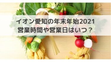 イオン愛知(名古屋)の年末年始2020-2021の営業時間や営業日、休業は?初売りはいつから?