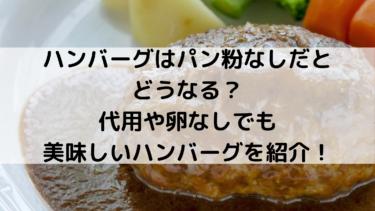 ハンバーグはパン粉なしだとどうなる?代用や卵なしでも美味しいハンバーグを紹介!