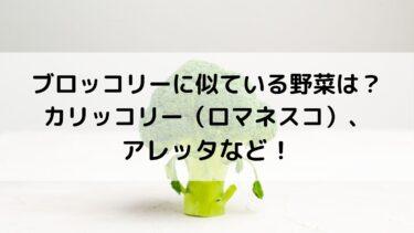 ブロッコリーに似ている野菜は?カリッコリー(ロマネスコ)、アレッタなど!