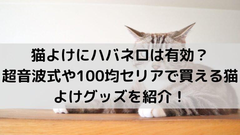 猫よけにハバネロは有効?超音波式や100均セリアで買える猫よけグッズを紹介!