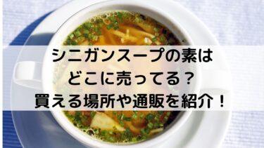 シニガンスープの素はどこに売ってる?買える場所や通販を紹介!