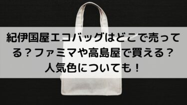 紀伊国屋エコバッグはどこで売ってる?ファミマや高島屋で買える?人気色についても!