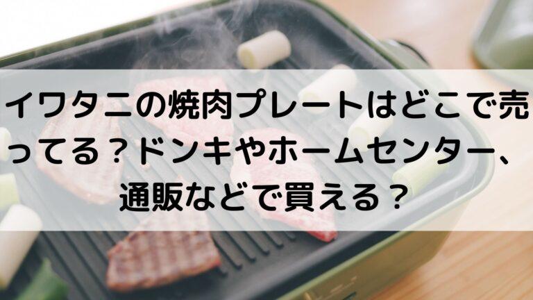 イワタニの焼肉プレートはどこで売ってる?ドンキやホームセンター、通販などで買える?