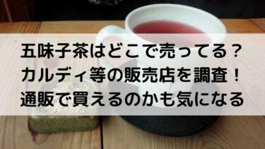 五味子茶はどこで売ってる?カルディ等の販売店を調査!通販で買えるのかも気になる